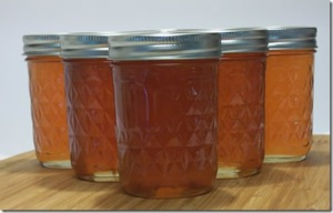 apple-jelly-and-sauce 039_thumb[5]