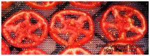 guts of tomato